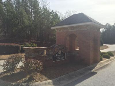Lot 17 - 205 Alcovy Reserve Way, Covington, GA - 1.25+/- Acre Lot -  (Newton County)